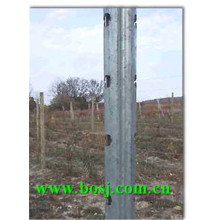 Vineyard Metal Steel Post Roll Forming Machine supplier Brésil