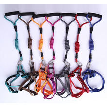 OEM Cat Dog Leash with Elastic String and Soft Handle