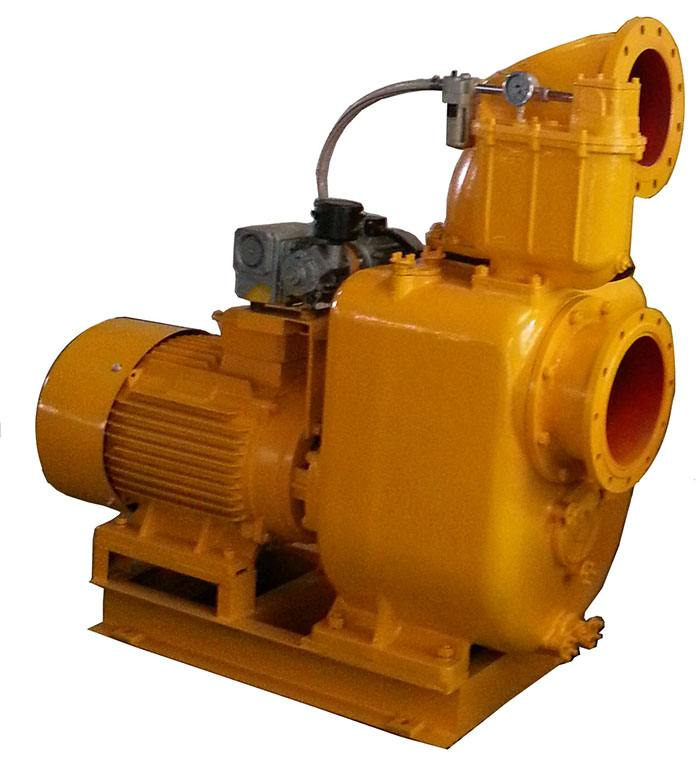 Powerful self-priming pump with vacuum assist system 2