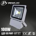 Well Sale Advanced Technology OEM Garden LED Flood Lighting