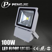Éclairage d'inondation de LED de jardin d'OEM de technologie avancée de vente de puits