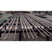 Tube de catalyseur de coulée centrifuge