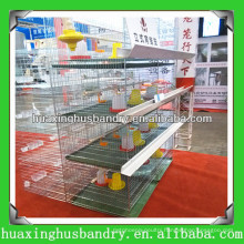 Baby Chicken Cage with automatic feeding and watering system