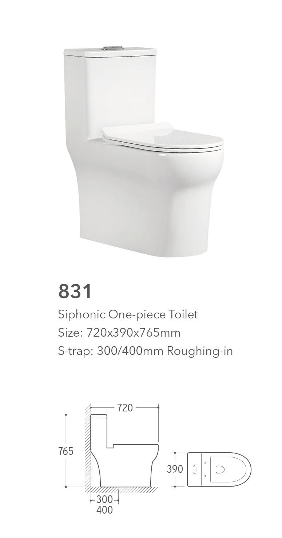 831 One Piece Toilet