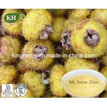 Natural Organic Rosa Roxburghii Extract/Cili Fruit Extract Vitamin C 3%-15% CAS: 50-81-7