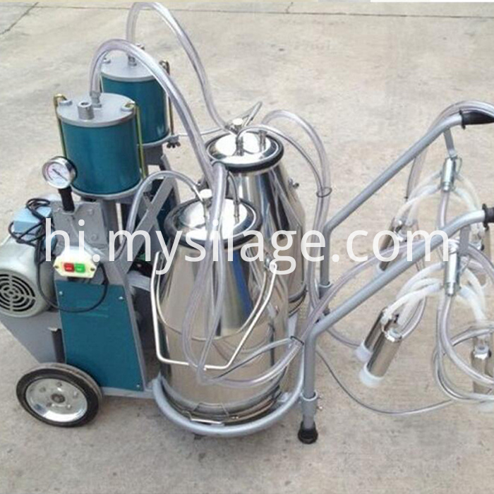 two buckets piston typed milking machine