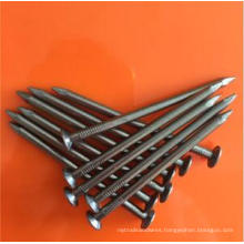 Made in China Round Common Nail
