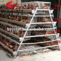 Plan d'affaires de ferme avicole en langue marathi