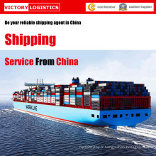 Service de livraison/expédition professionnel logistique de la Chine (Service d'expédition)