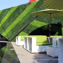 El proveedor de China personalizó una pared verde artificial resistente al fuego para mayor privacidad