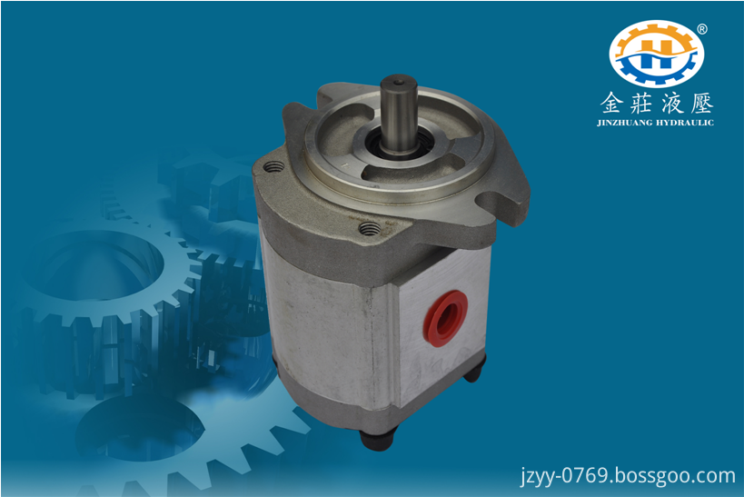 Sanitary Gear Pump