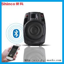 Ce Certificate Factory HiFi Portable Bluetooth FM Radio Speaker
