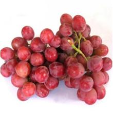 yunnan grape red grape fresh red grape fresh fruit