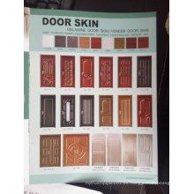 Piel de la puerta de chapa de madera