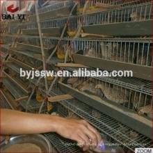 Gaiolas de criação de codornas da fazenda de aves de capoeira para venda na Malásia