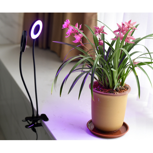 Oficina en casa Grow Light con abrazadera 40W