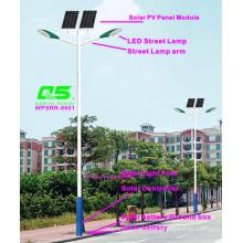 WPSRR-8601 3~15m Municipal Road Hot DIP Galvanized Steet Light Pole style