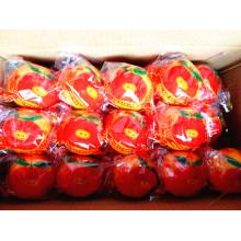 10kgs / Carton Top Mandarim Chinês Fresco de Qualidade