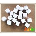 Plastic blank white dice