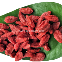 Low Pesticide Dry Zhongning Goji berry