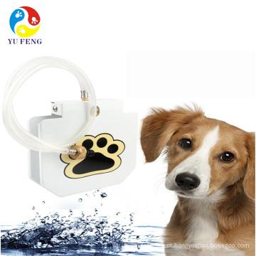 bebedouro de água potável direta ao ar livre bebedouro para cães direto bebedouro refrigerador de água ao ar livre para cães