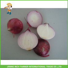 High quality and best price Chinese fresh onion 5-7cm size