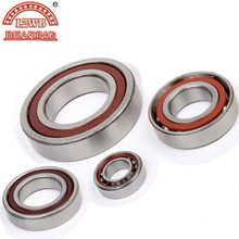 Most Competitive Price Angular Contact Ball Bearing (7300C-7307C)