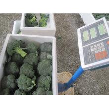 fresh top class broccoli