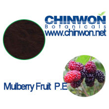 Colorant Mulberry Fruit Extract Anthocyanidins 5% - 25%
