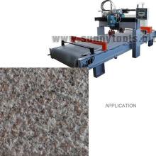 China Berufsschaber-Diamant-Bush Hammer Strong Carbide Tips Grinding