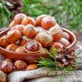 High Quality Best Selling Cheap Price Hazelnut Kernels