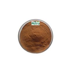 Extracto de polvo de reishi 30% polisacáridos