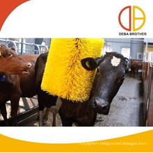 agriculture equipment cattle farm use scratch brush cattle brush