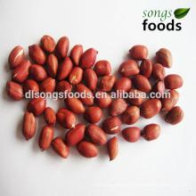 Nut 50/60 60 70 Peanut Kernels