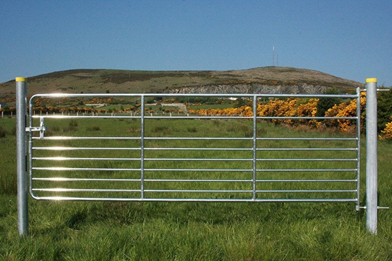 horse cattle fence