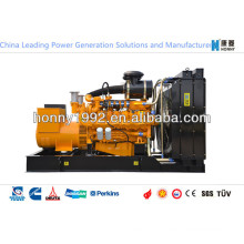 250kVA Double Fuel Generators with Diesel Fuel, Nature Gas