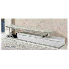 Modernes Design Marmor und Edelstahl TV-Möbel (8001)