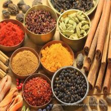 Especiarias mistas, tempero, sabor diferente, cinco especiarias, milho, sabor de peixe, sabor de carne muçulmana