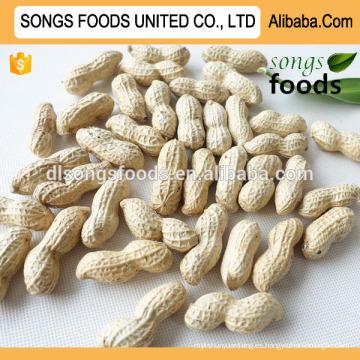 Productos más vendidos Songs Foods Raw Peanut Inshell