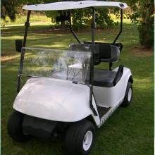 2 seats ezgo golf carts