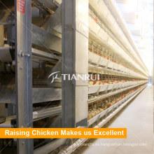 Jaula de alta calidad de la batería de pollo de broiler
