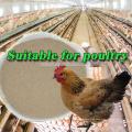 Alibaba Supplier Brewers Levadura seca para alimentos para animales