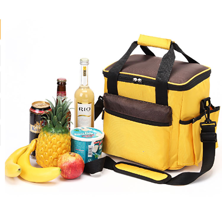 Ice Cooler Backpack