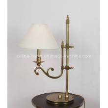Decorative Metal Table Lamp (SL82163-1T)