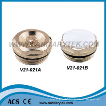 Radiator Air Vent and Radiator Plug (V21-021)