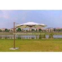 Paraguas de jardín al aire libre paraguas (BP-U65)