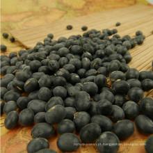 2012 Hot sale Big feijão preto com miolo amarelo
