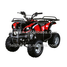 NIÑOS ATV 110CC (FA-D110)