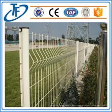 Clôture soudée de maille métallique fabriquée à Anping (Chine en gros)