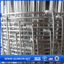 Valla de ganado de metal galvanizado (Venta caliente)